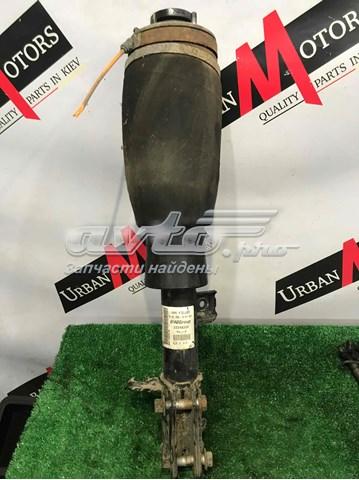 амортизатор передній, правий  LR032560