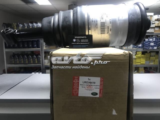 амортизатор задній  LR016419