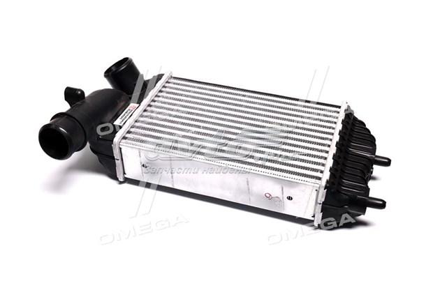 радіатор интеркуллера  40004183